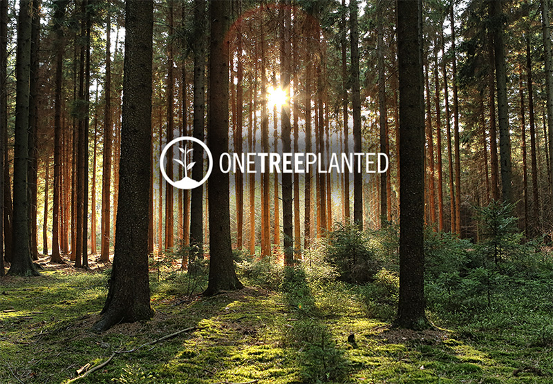 LAW OFFICE OF JOEL M. MANN PARTNERS WITH ONE TREE PLANTED TO PLANT 10K TREES